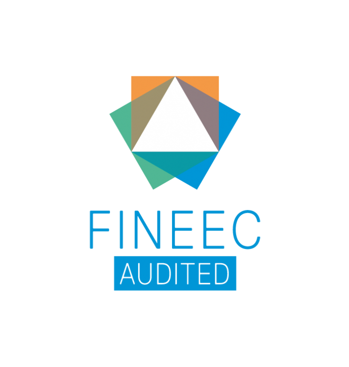 FINEEC AUDITED box blue cmyk
